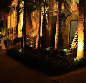 Exquisitely lit palm trees in front of a Florida estate