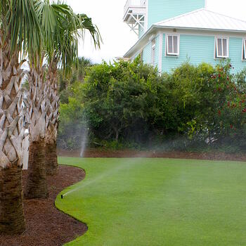 The best time to fertilize your lawn in Florida: twice, once in April and once in September.