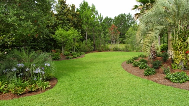 residential landscaping 9 640x360