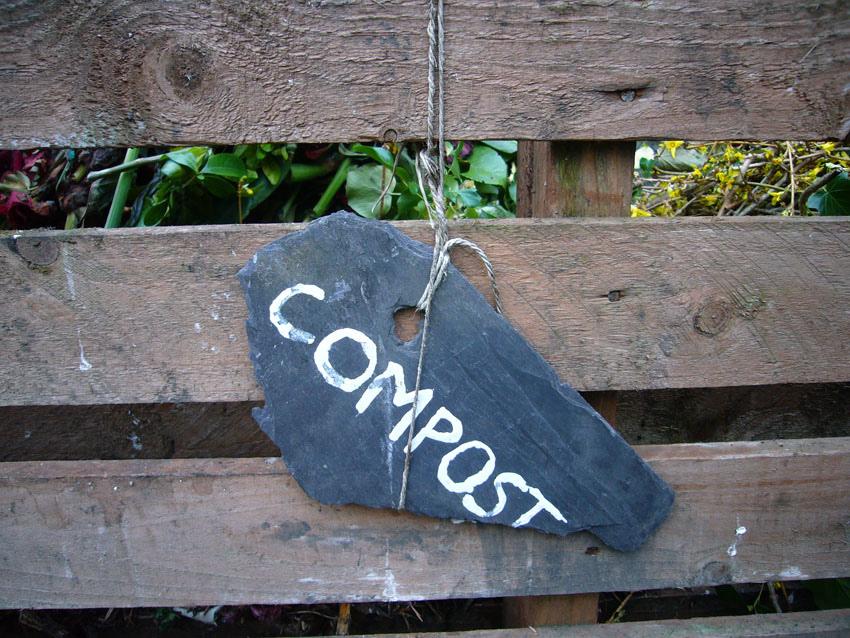 compost eco friendly florida lawn