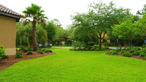 5 Factors To Consider When Choosing Your Landscape Contractor