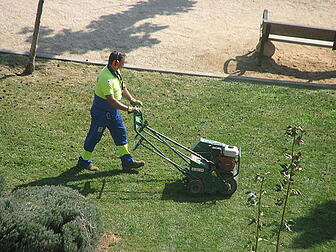 lawn aeration allows water, nutrients and oxygen to get to the root area