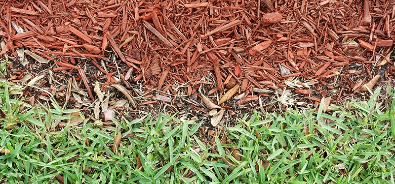 Don't Forget to Apply a Heavy Layer of Mulch in Fall
