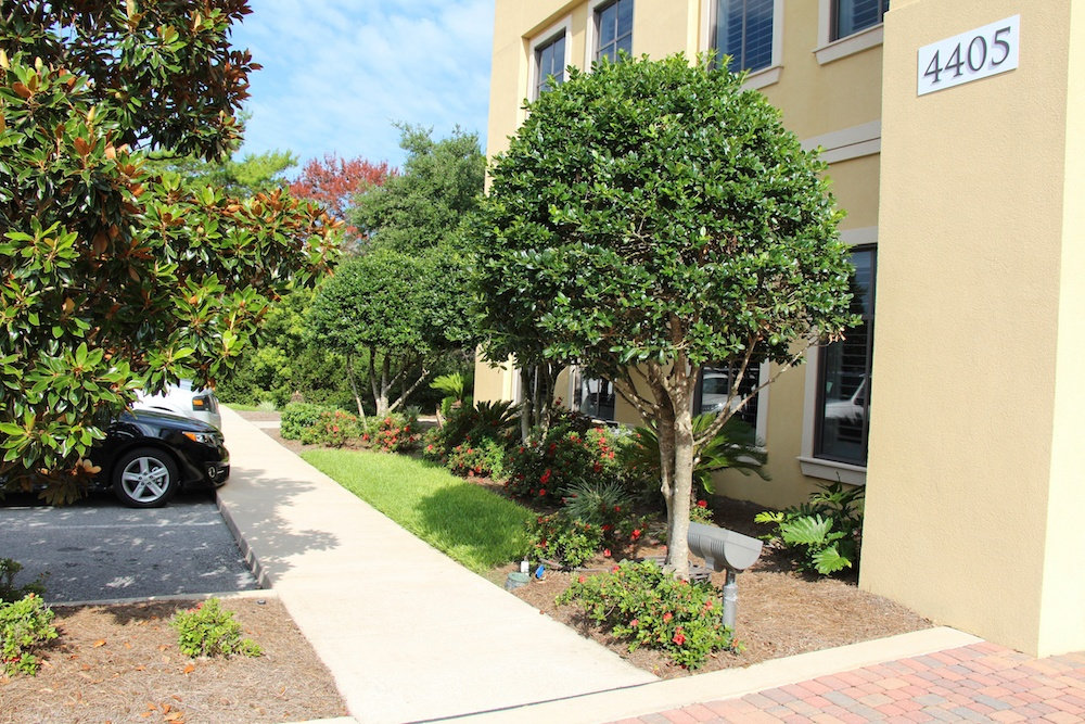 Check out our commercial landscaping for Smart Bank